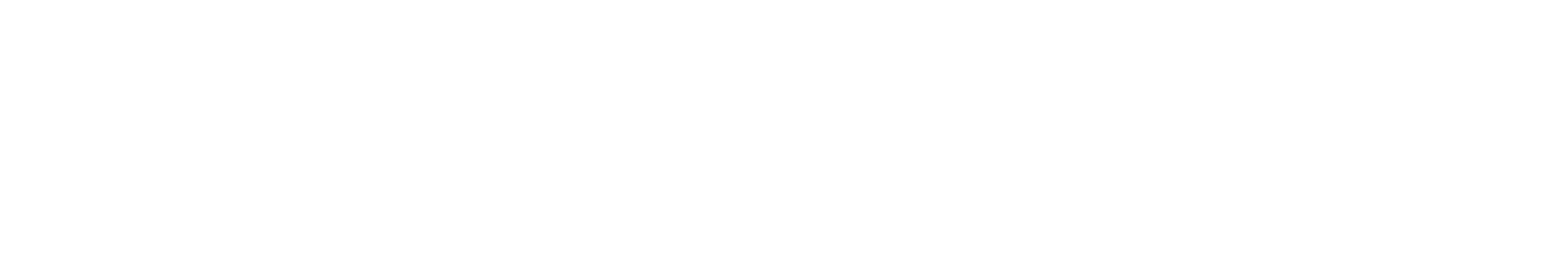storage-craft-logo1.png